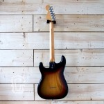 tgc-full-back-fender-stratocaster-1976